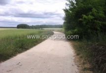 campagne-1266-1