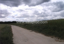 campagne-1266-10